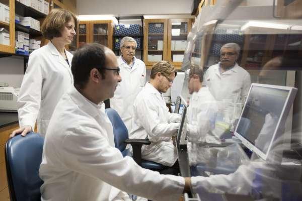 Julie Johnson Lab